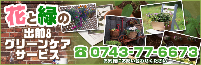 花と緑の出前&グリーンケアサービス|TEL:0743-77-6673 お気軽にお問い合わせください。